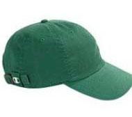 champion-c4001-green